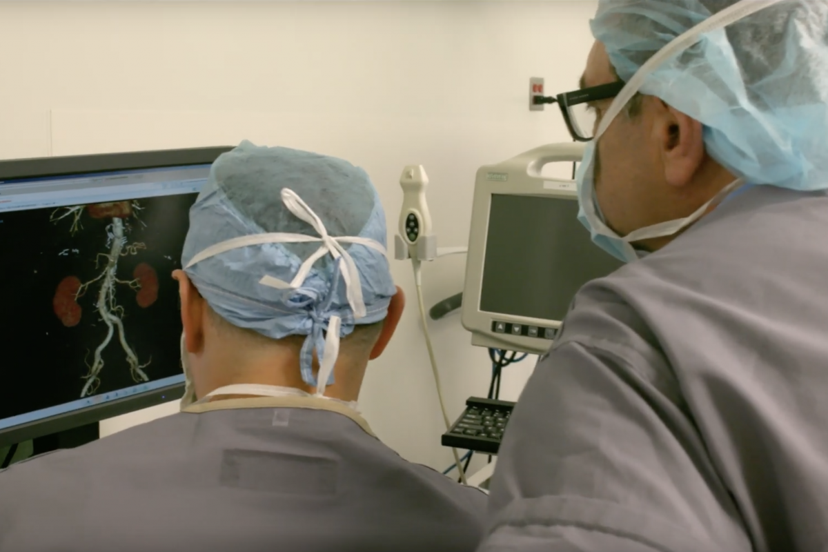 Two transplant surgeons look at a computer screen with a lungs modeled on a program.