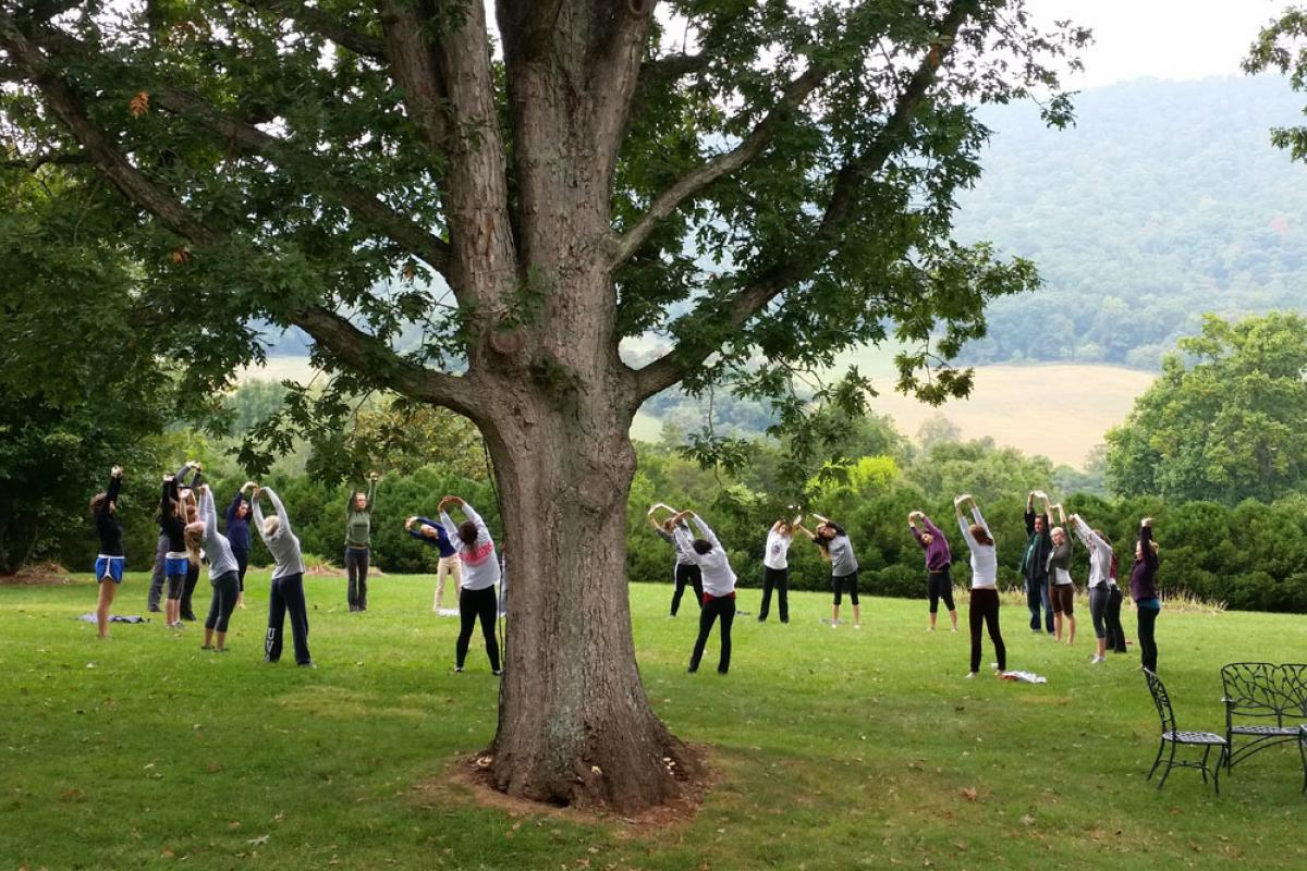 Nursing students practice yoga in a picturesque field.